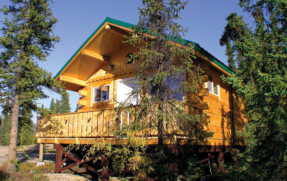 Denali National Park Lodging